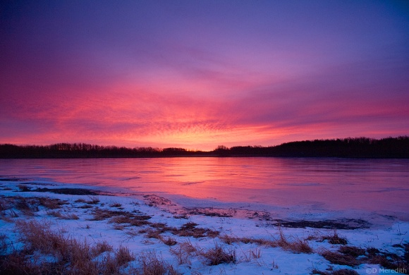 Frozen slough at sunrise, Punnichy, Saskatchewan, Canada