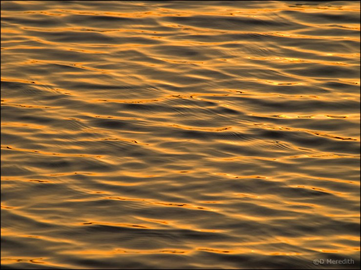 sunrise/ripples