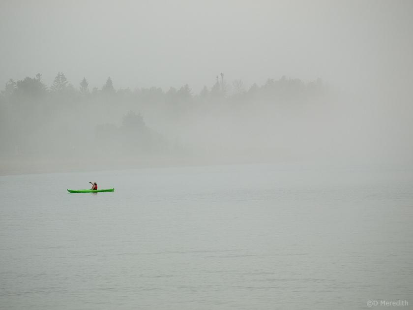 A splash of green.
