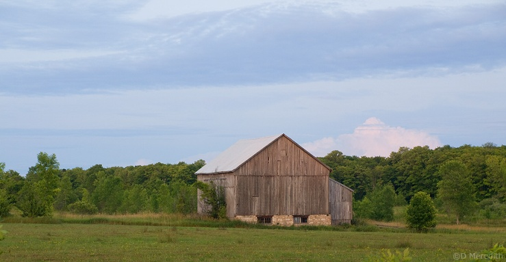 Evening light on an old barn.