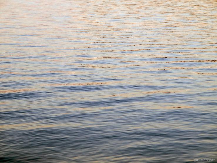Sunrise ripples.
