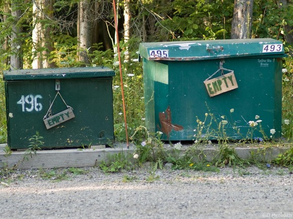 Bear proof garbage cans.
