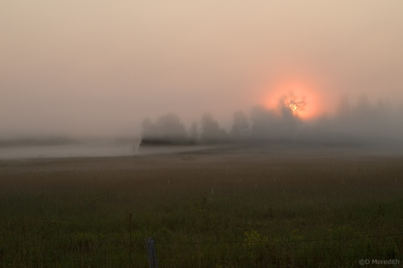 Rising sun through mist