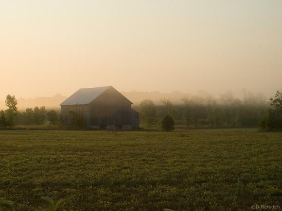 Old barn in mist at sunrise.
