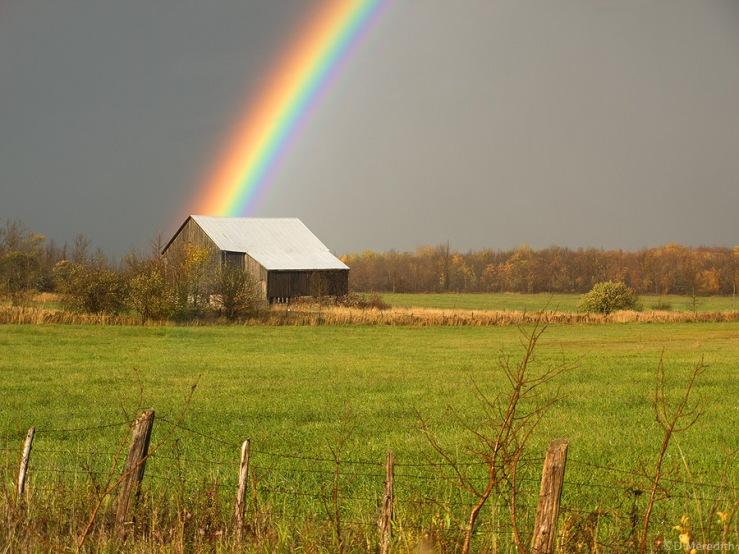 Old barn and a rainbow.