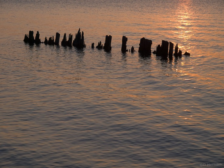 Piles and ripples at sunrise.