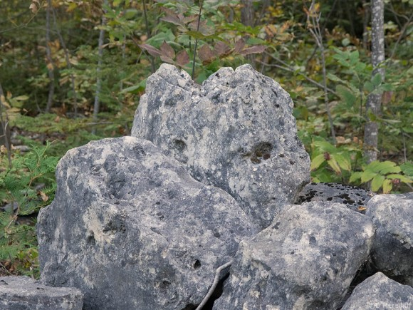 A face in the rock.