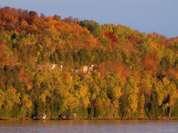 A section of autumn colour on the Niagara Escarpment.