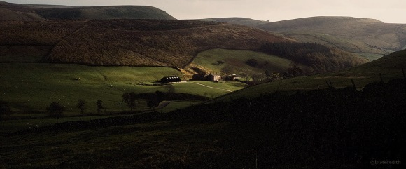 Light on a hillside farm.
