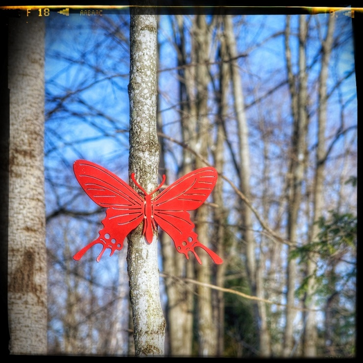Red Butterfly garden ornament.