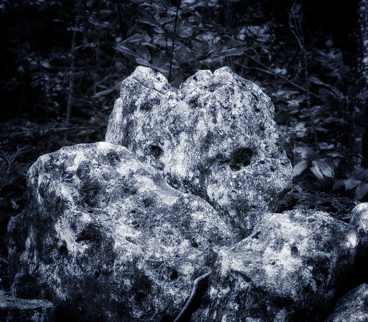 A boulder in a ditch.
