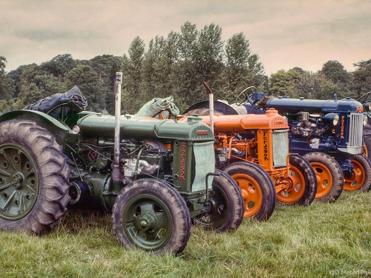 Old Fordson tractors.