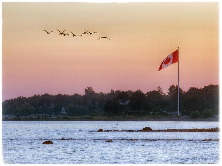 Lens-Artists Photo Challenge: Lakeshore.