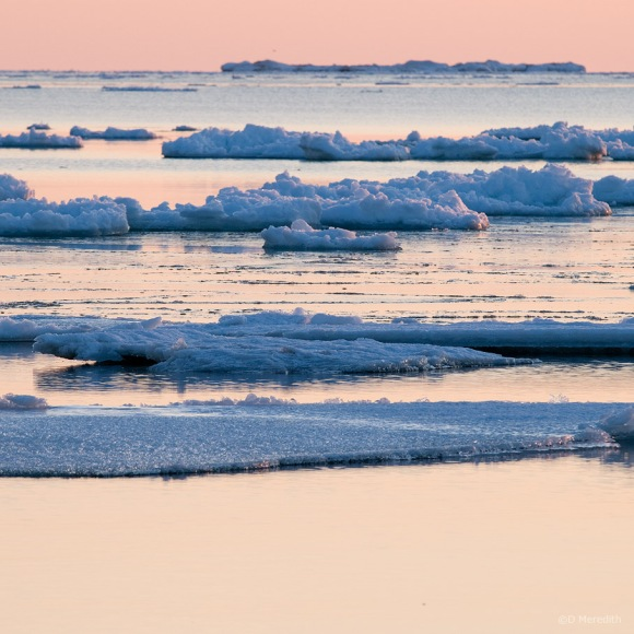 October Squares: Lines of Ice at Sunset