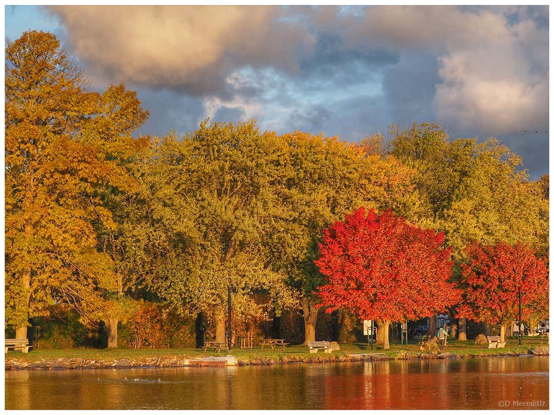 Six Word Saturday: Some Autumn Colour at the Park
