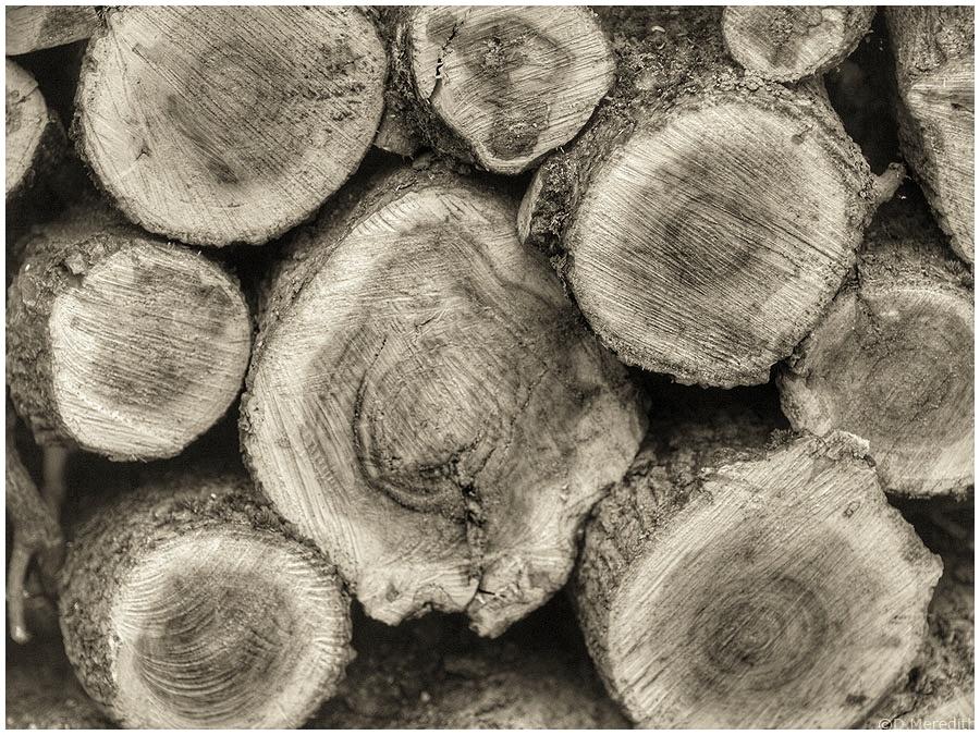 Cee's Black and White Photo Challenge: Stacks