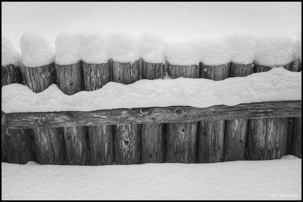 Monochrome Monday: Fence in the Snow