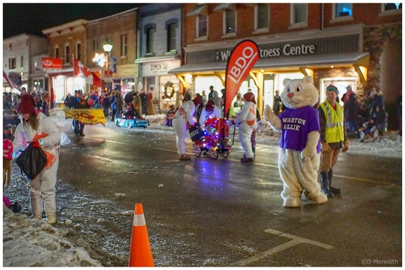 Six Word Saturday: The Santa Claus Parade Street Walkers