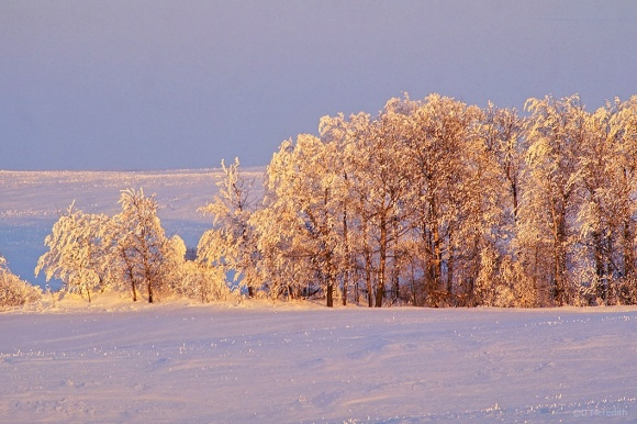 Six Word Saturday: A Snow and Hoarfrost Covered Landscape