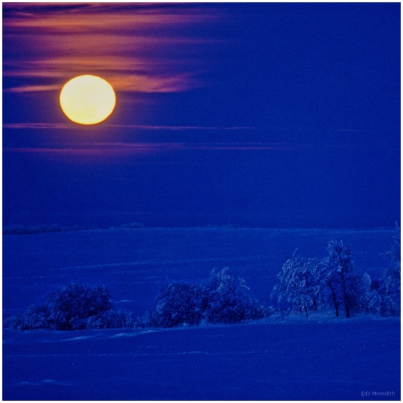 January Squares: Winter Prairie by Moonlight