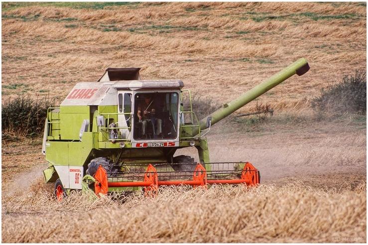 Cee's Fun Foto Challenge: Harvest Scenes