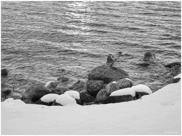 Cee's Black and White Photo Challenge: Hot or Cold Things