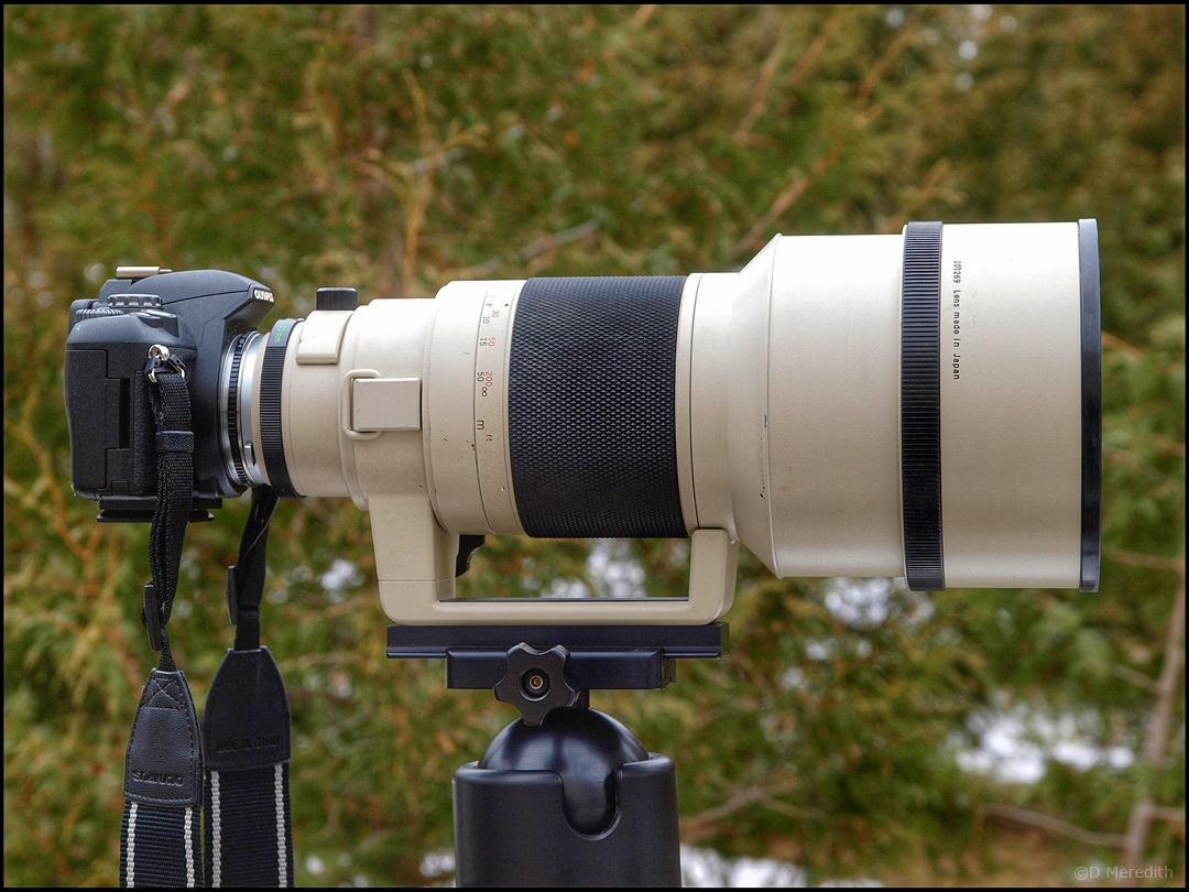 Fan Of... OM Zuiko 350mm lens part 2