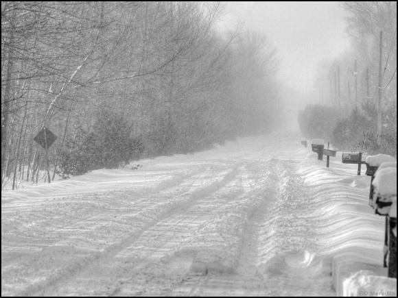 Cee's Black and White Photo Challenge: Roads