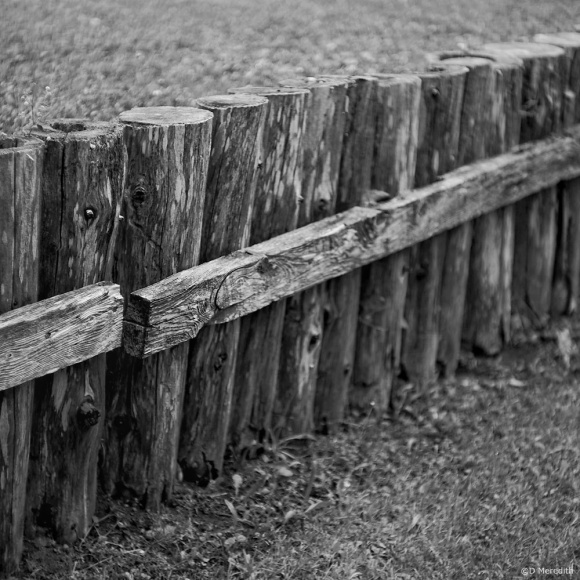 July Squares: Monochrome Perspective on a Fence
