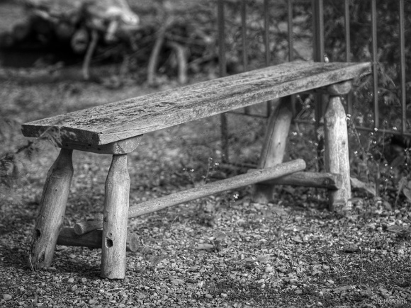 Cee's Black and White Photo Challenge: Benches