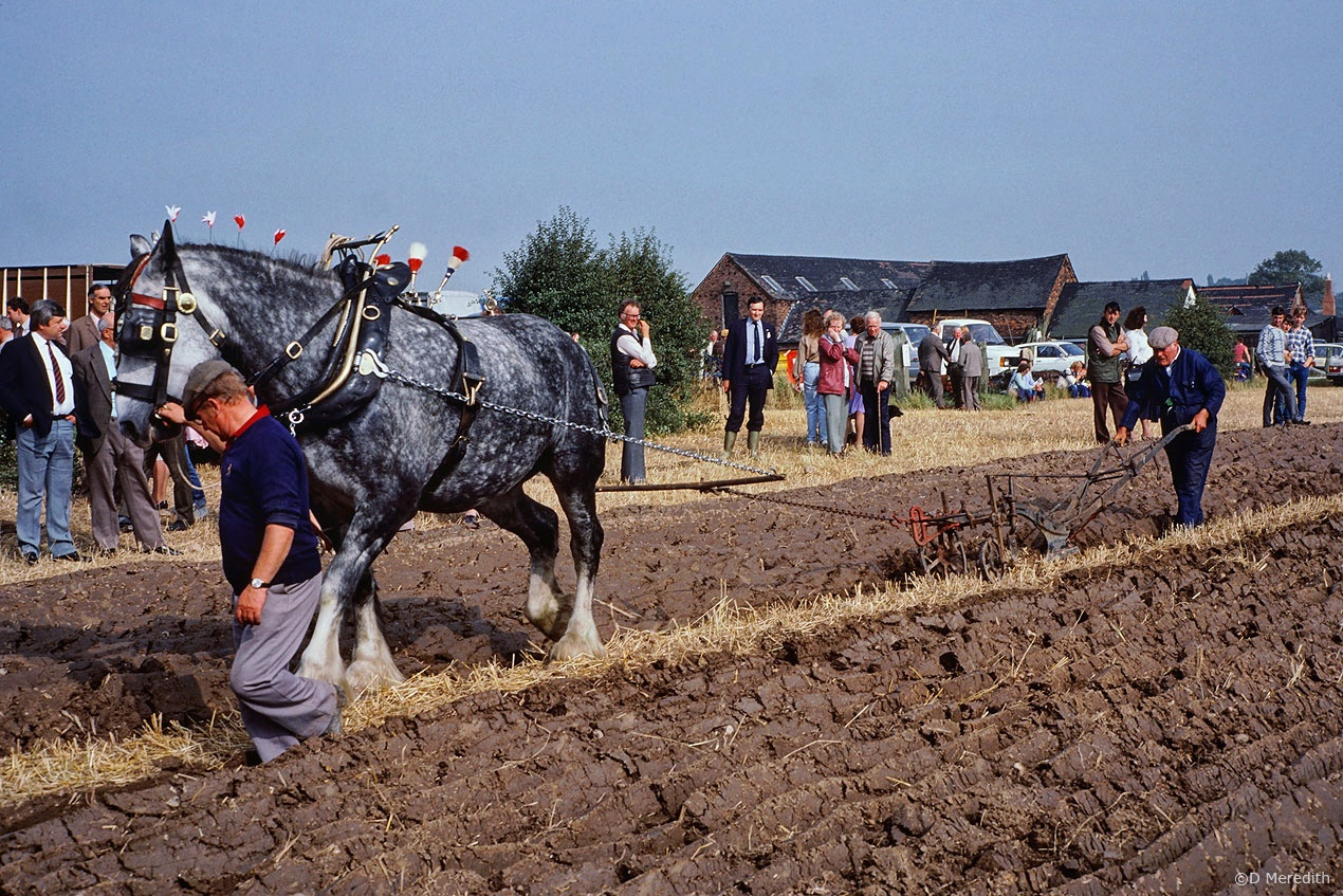 Travel Tuesday: Ploughing with a horse