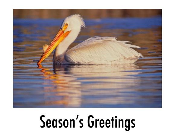 Christmas Card: 2020