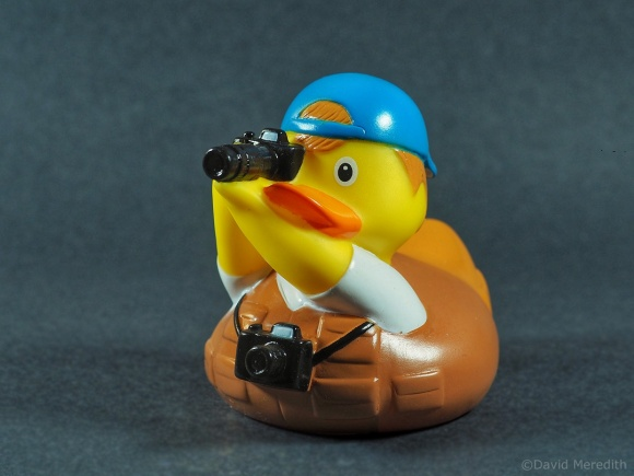 Six Word Saturday: Everyone, meet Dave the Rubber Ducktographer