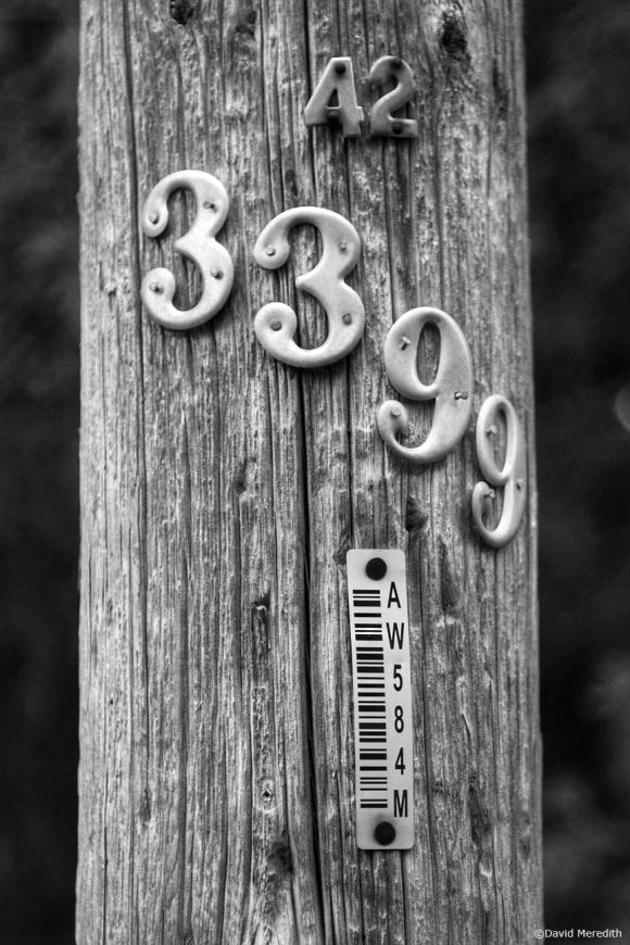 CBWC: Numbers