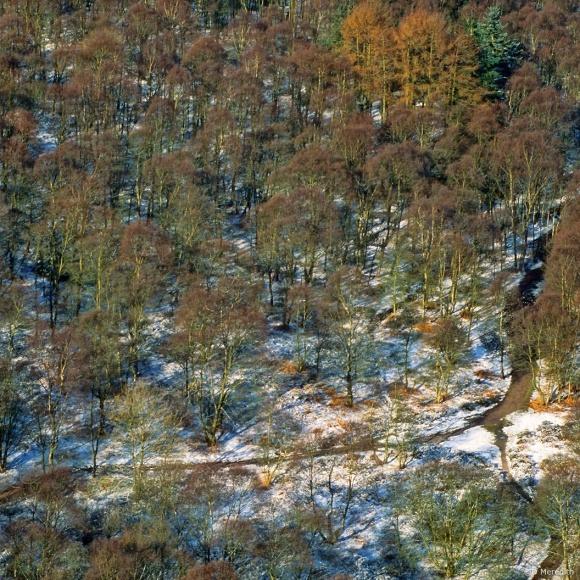 April Squares: Bright Snow