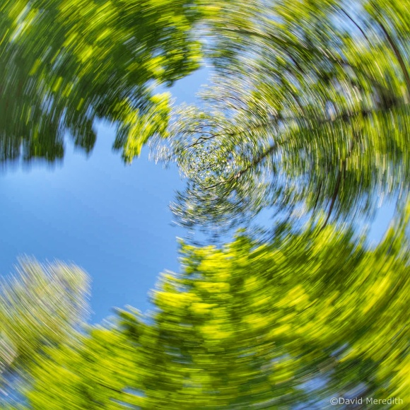 Cosmic Photo Challenge: From an Unusual Angle